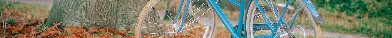 cykler1500x145
